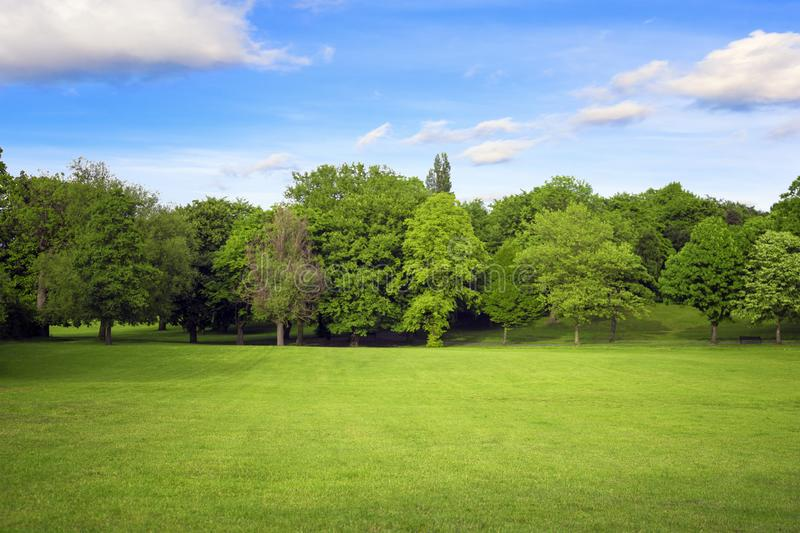 Meadow and forest under blue sky. Ecology banner royalty free stock photo