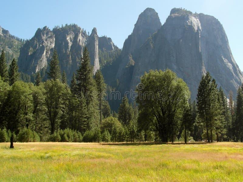 Meadow granite cliffs Yosemite National Park royalty free stock image