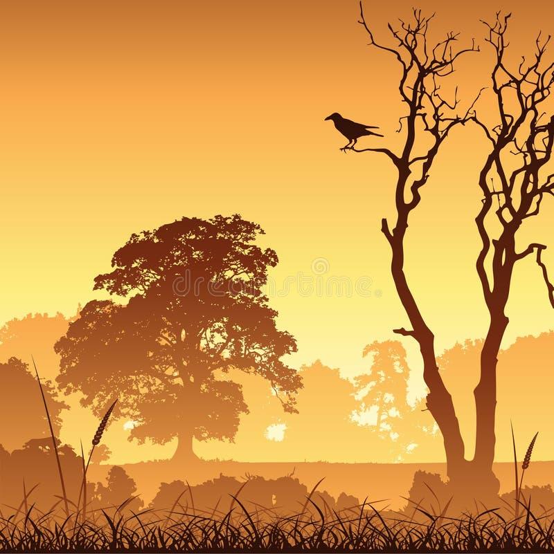 Meadow Landscape vector illustration