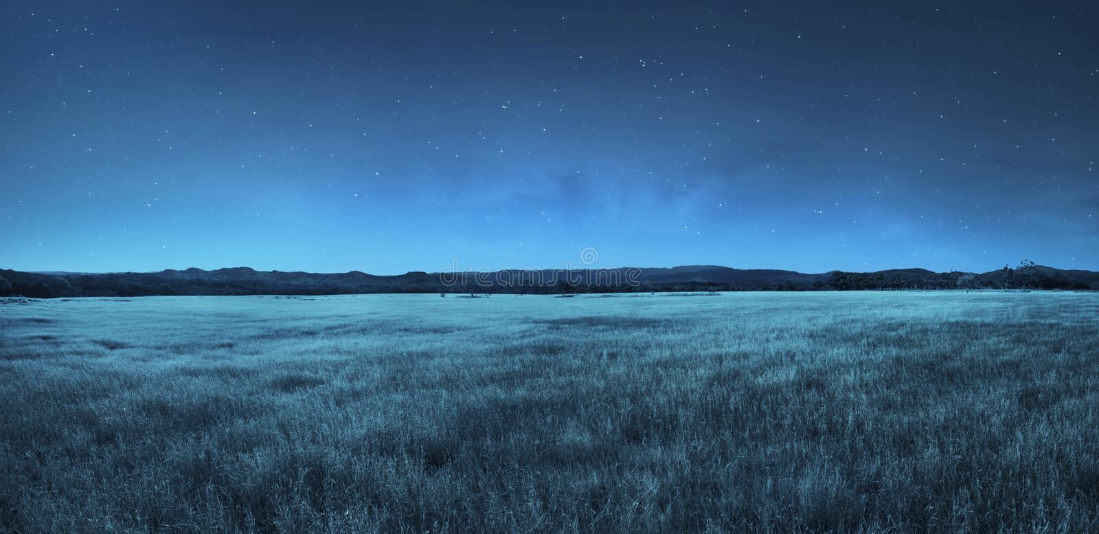 Meadow landscape at night time royalty free stock photography