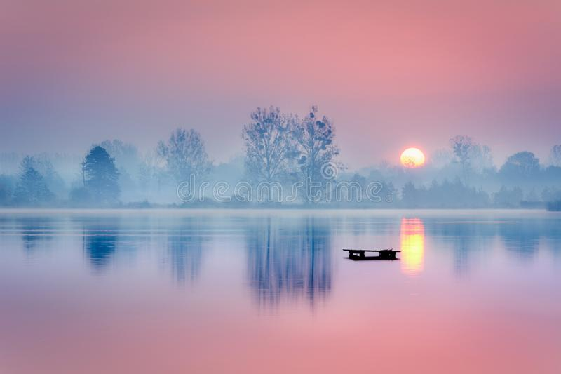 Frosty morning at the lake royalty free stock photography