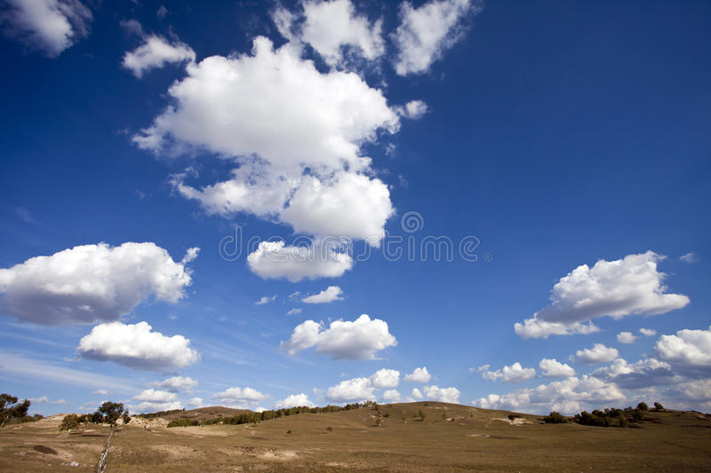 Download Meadow meets sky stock photo. Image of environment, blue - 21457762