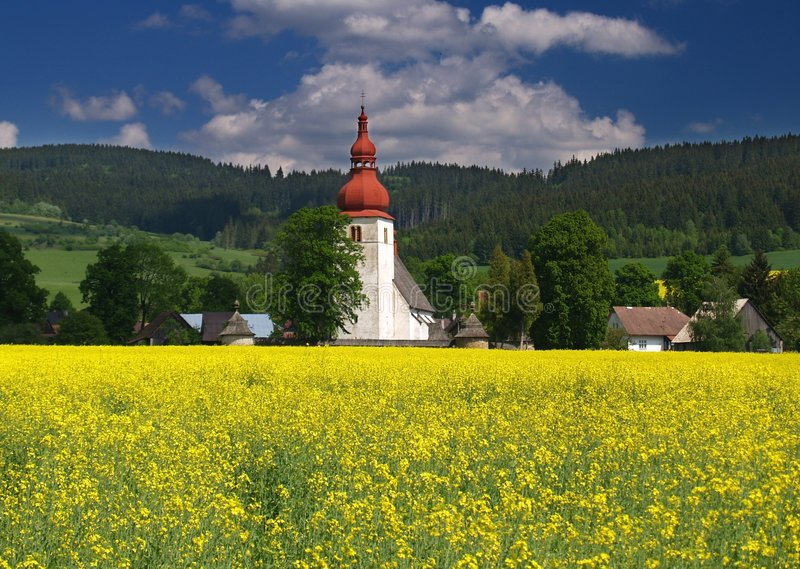 Meadow and old church. Yellow meadow and old church in Slovakia stock photography