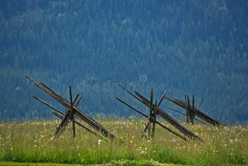Meadow with poles stock photos