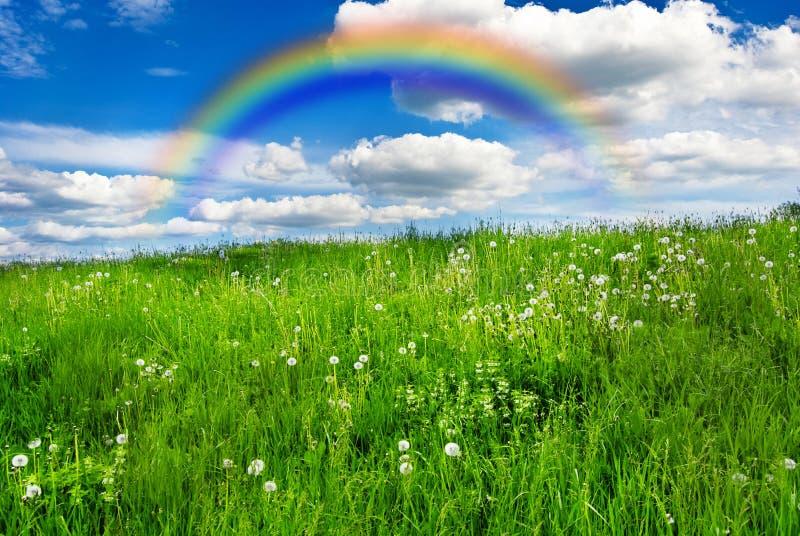 Meadow with rainbow stock photo