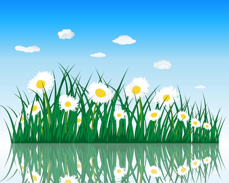 Download Meadow with reflection stock vector. Illustration of garden - 26380509