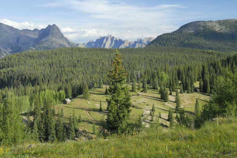 Meadow in San Juan Mountains in Colorado royalty free stock photography