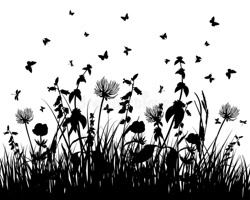 Download Meadow silhouettes stock vector. Image of floral, garden - 12076369