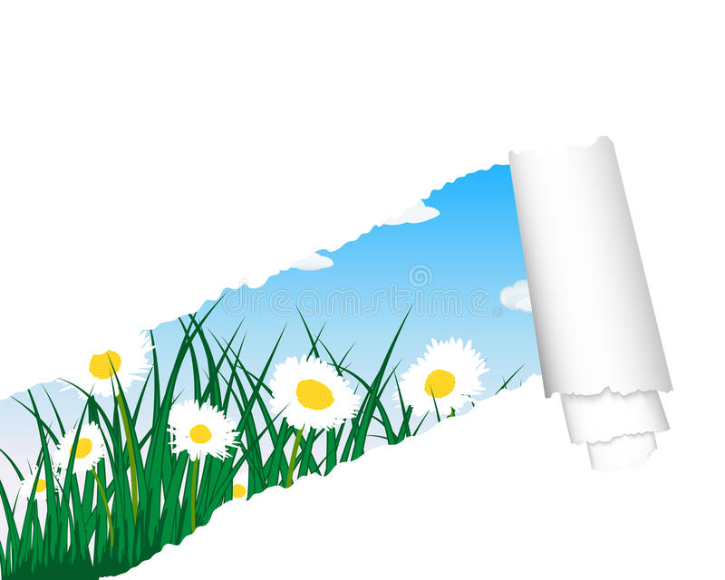 Download Meadow Silhouettes With Ripped Stripe Stock Vector - Image: 24367868