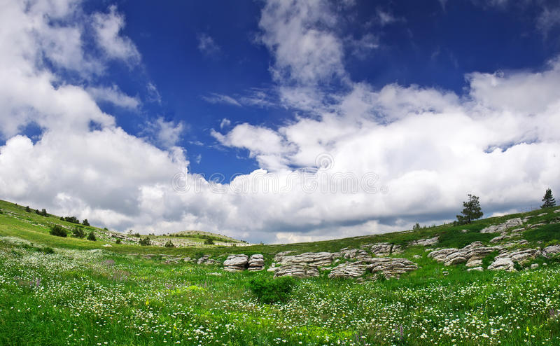 Download Meadow and sky stock image. Image of outside, countryside - 25917303