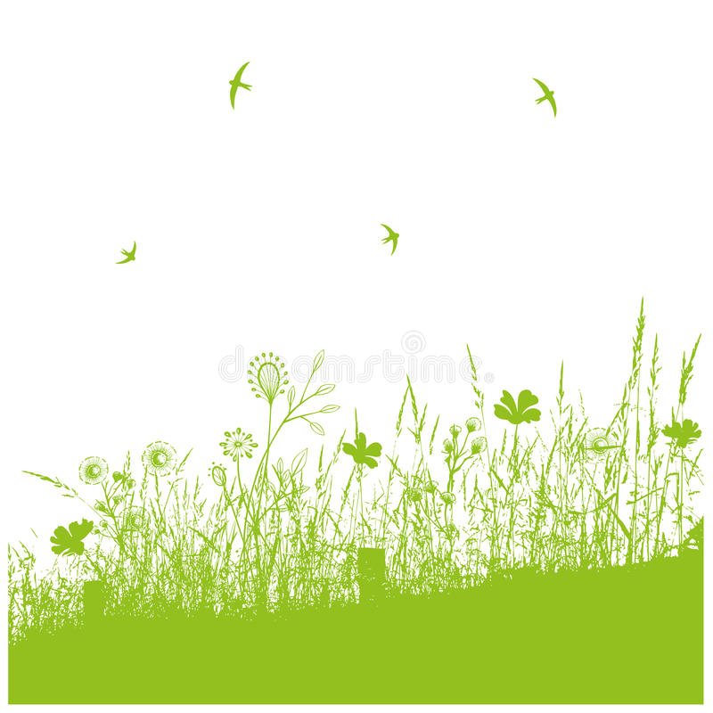 Download Meadow, spring stock photo. Image of graphic, green, border - 34386506