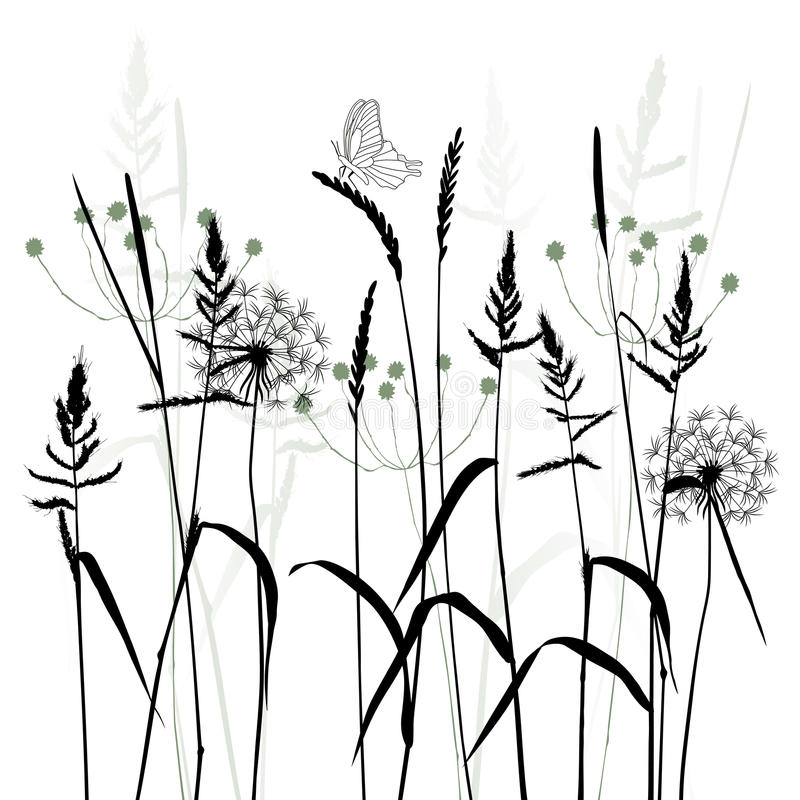 The Meadow In Summertime, plant vector vector illustration