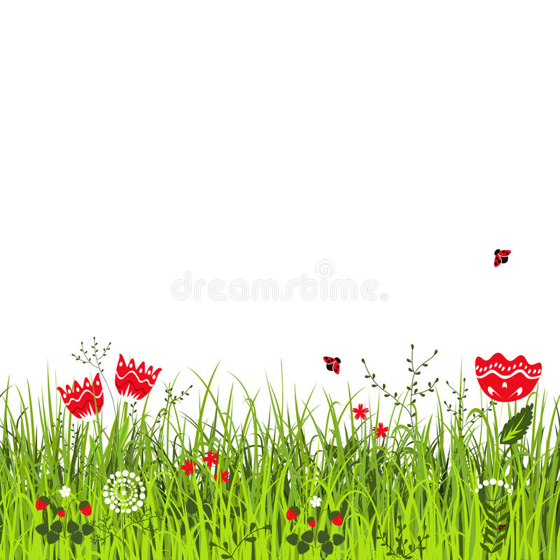 Meadow in sunny summer day. Ladybirds flying above the grass with flowers. Vector illustration vector illustration