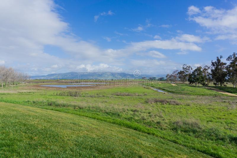 Meadow in Sunnyvale Baylands Park; view towards Mission Peak, south San Francisco bay, California stock photography