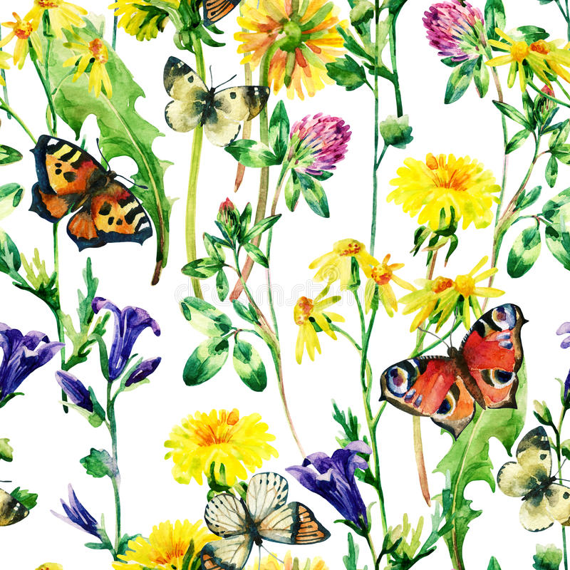 Meadow watercolor flowers and butterfly seamless pattern royalty free illustration