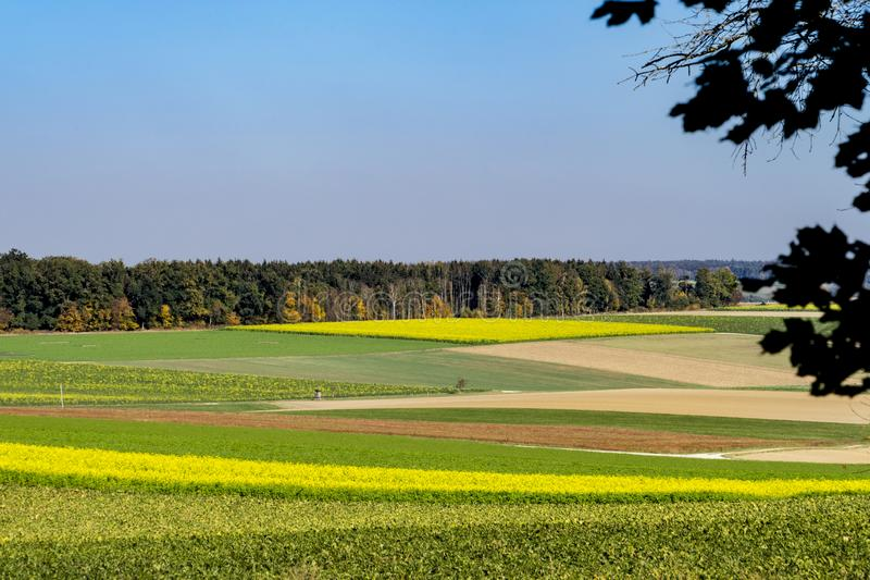 Colorful landscape along Romantic Road, Germany. Meadow in yellow, green and brown colors, against blue sky. Copy space. Landscape along touristic route called royalty free stock photo