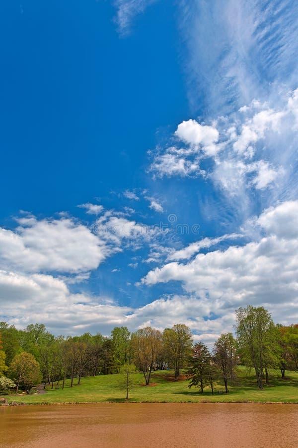 Meadowlark ogródy fotografia stock