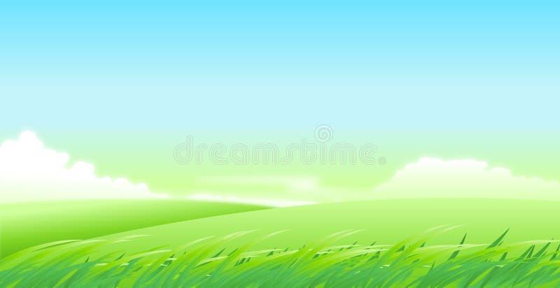 Meadows vector illustration