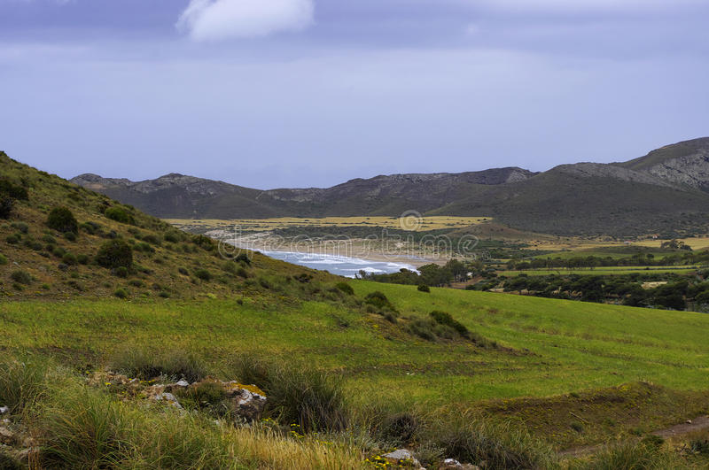 Download The Meadows Of The Cabo De Gata National Park Stock Image - Image: 25379269