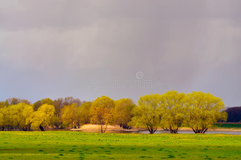 Meadows at the Elbe. Meadows along the Elbe under stormy weather front stock image