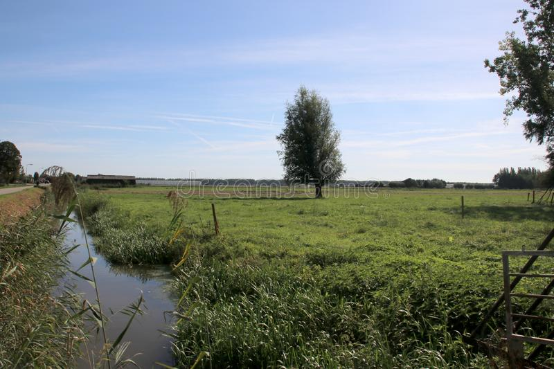 Meadows and farms of the Zuidplaspolder as part of lowest area of west Netherlands. stock photo