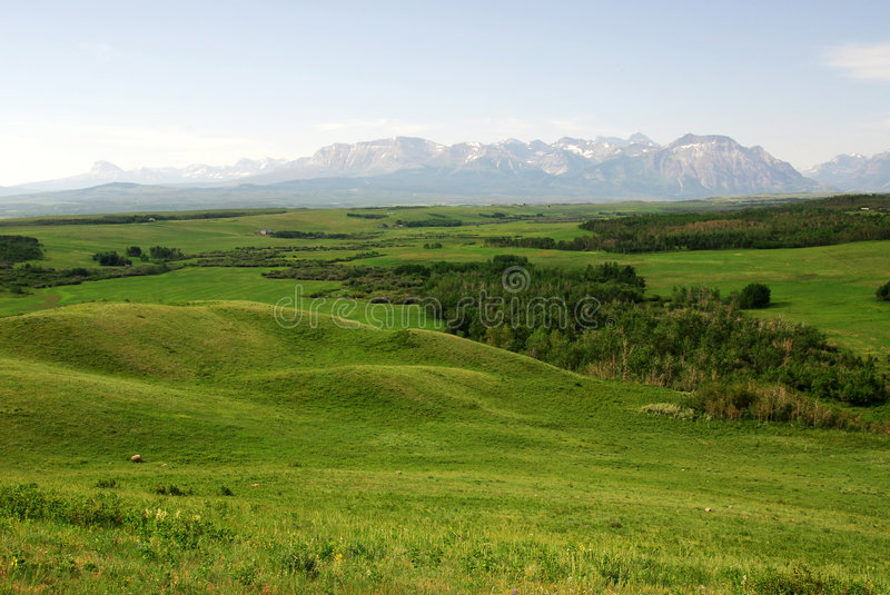 Meadows, forests and mountains. Summer view of meadows, forests and mountains in waterton lakes national park, alberta, canada royalty free stock photos