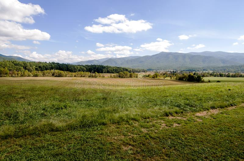 Meadows in the Great Smokies, America stock image