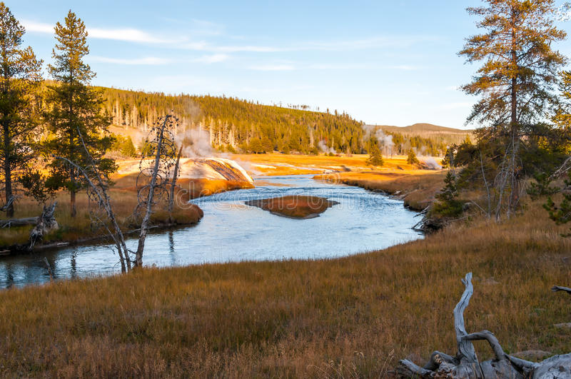 Meadows of the Lewis River valley, Yellowstone NP. royalty free stock photography