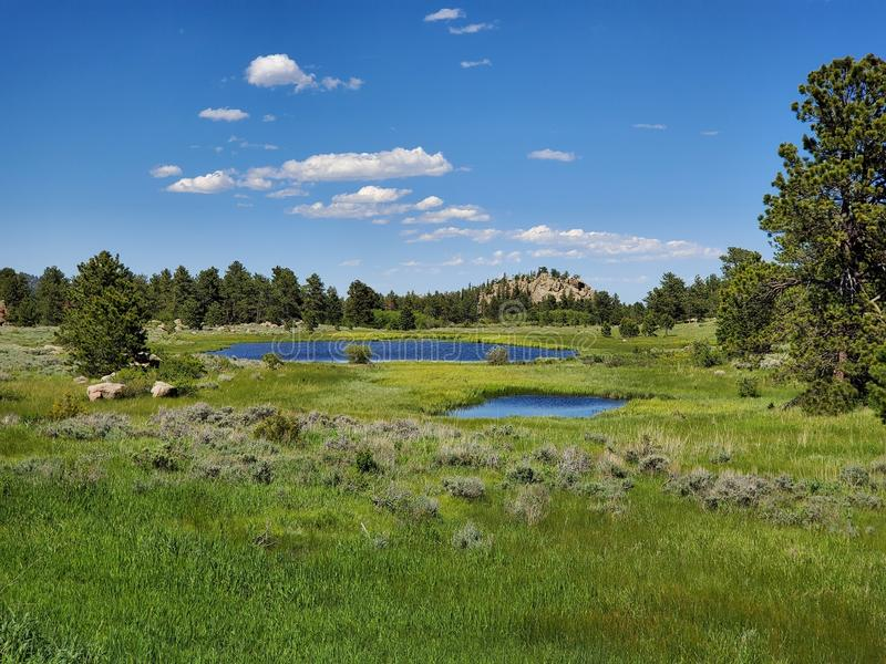 Meadows and ponds near Dowdy Lake Colorado. I took this photo while hiking near Dowdy Lake,Colorado in June 2019. The trail leads to meadows, ponds and natural royalty free stock photos