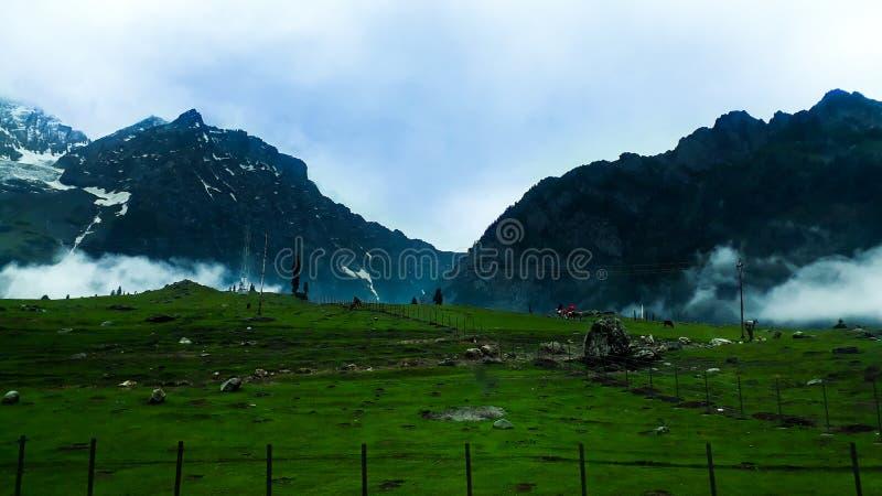 Meadows of sonamarg.  stock photography