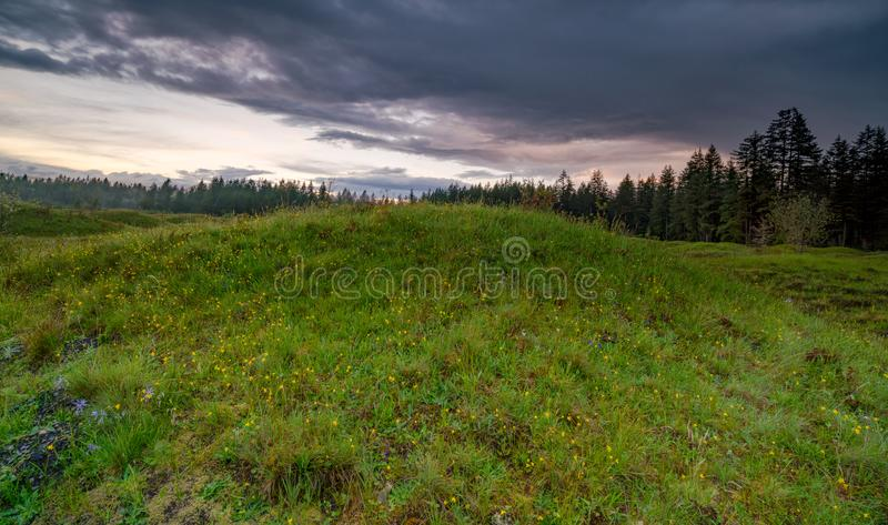 Meadows in Spring. Meadows under the clouds in Washington State stock images
