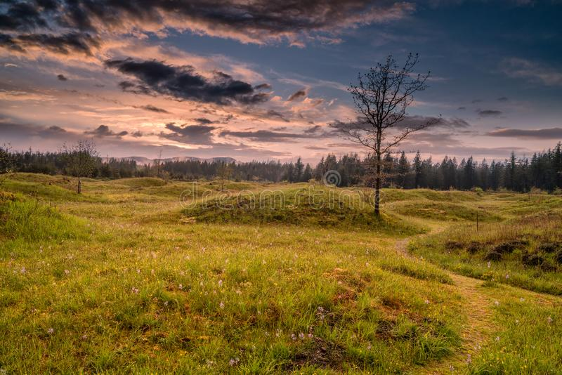 Meadows in Spring. Meadows under the clouds in Washington State stock photography