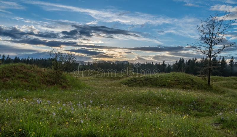 Meadows in Spring. Meadows under the clouds in Washington State royalty free stock image