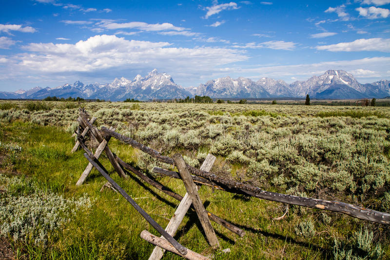Meadows and Teton Mountains. At Grand Teton National Park stock photos