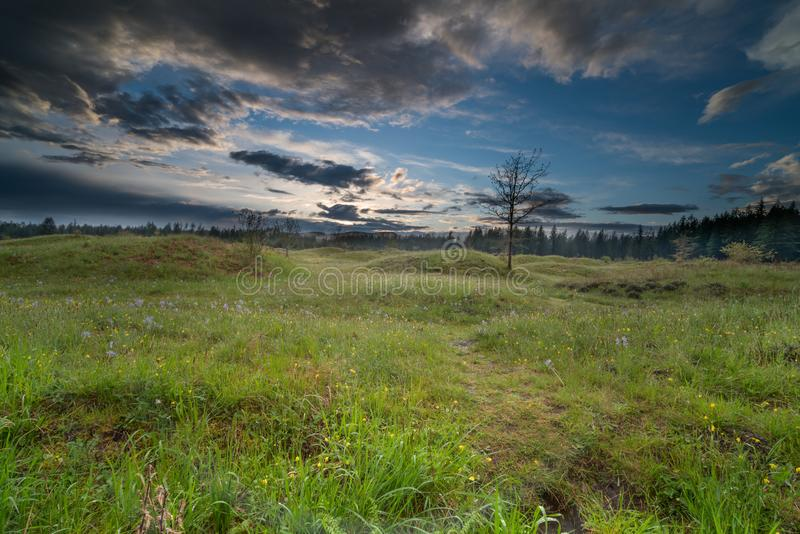 Meadows in Spring. Meadows under the clouds at sundown in Washington State royalty free stock images
