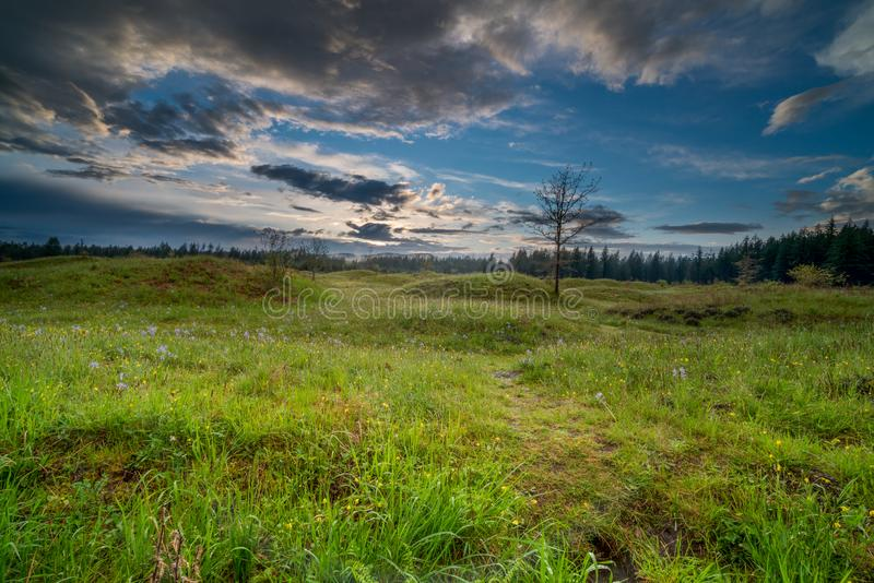 Meadows in Spring. Meadows under the clouds at sundown in Washington State stock photo