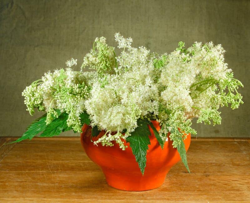 Meadowsweet. Still life. Bouquet of meadow flowers in orange pot stock images