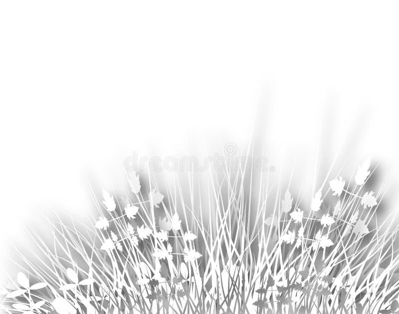 meadowy διανυσματική απεικόνιση