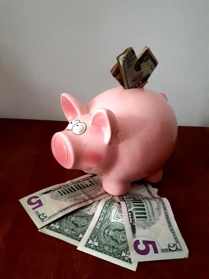 Mealheiro cor-de-rosa com notas de dólar múltiplas foto de stock