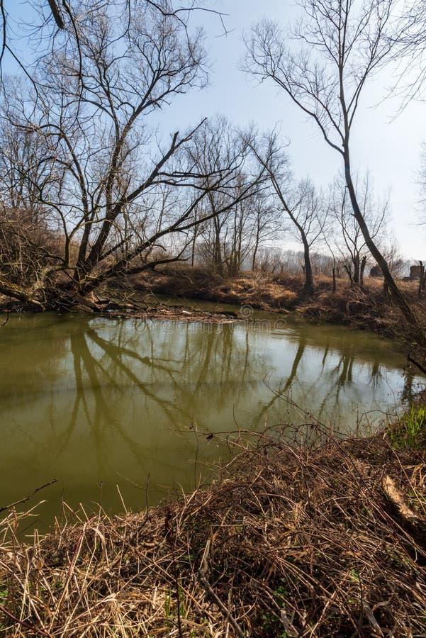 Meander van Odra-rivier in CHKO Poodri in Tsjechische republiek royalty-vrije stock foto's