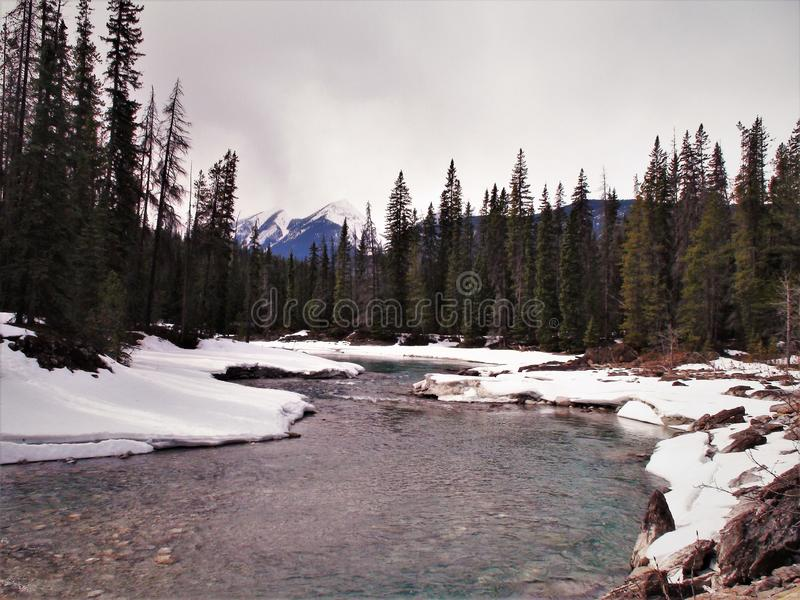 Meandering river on nice winter day. Near yoho national park alberta canada royalty free stock photo