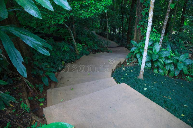 Meandering stairway steps in the green natural park garden. Family Outdoor Activities, Walking Trail in nature, Recreation, Leisur. E, Camping, Picnic concept royalty free stock photography
