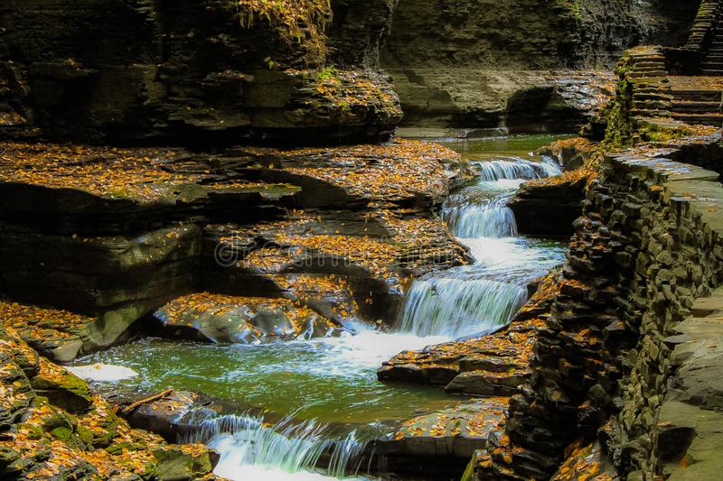 Meandering stream stock images