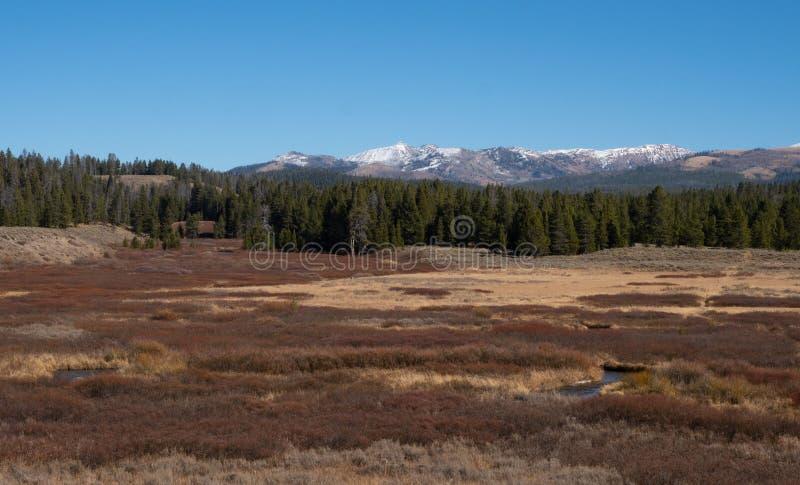 Meandering zatoczka przez doliny z jesieni roślinnością i trawą obraz royalty free