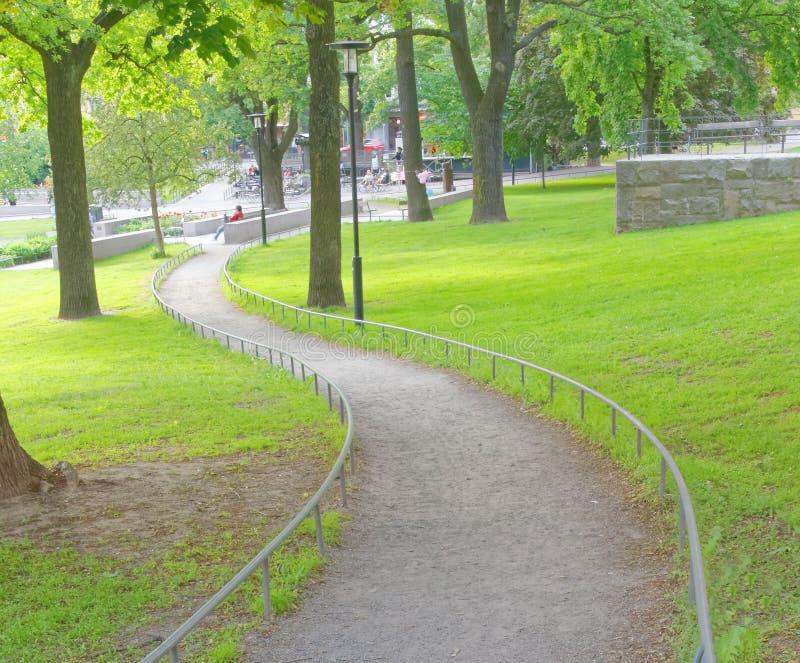 Meanderweg in het park stock fotografie