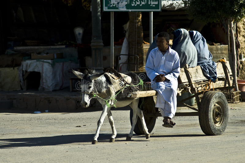 Means of transport in Siwa stock photo