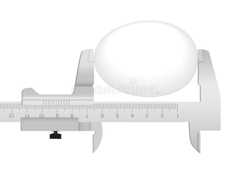 Measuring Tool And Egg Royalty Free Stock Images