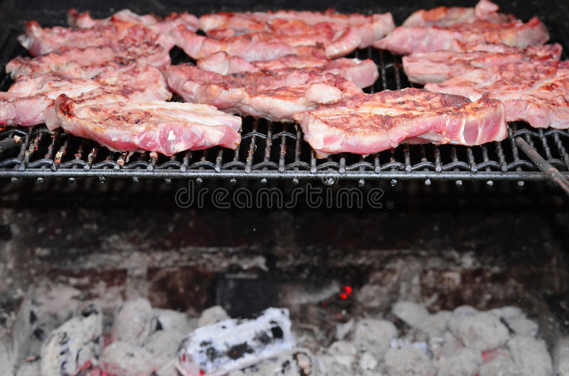 Download Meat on the BBQ stock photo. Image of fresh, health, loins - 25397178