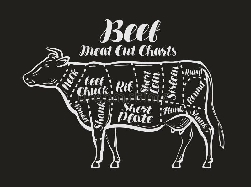 Meat cut charts. Cow, beef concept. Menu restaurant or butcher shop. Vector illustration stock illustration