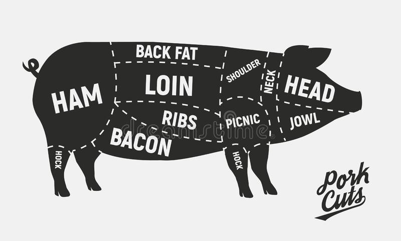 Meat cuts. Pork cuts. Vintage Poster for butcher shop. Retro diagram. Vector illustration vector illustration